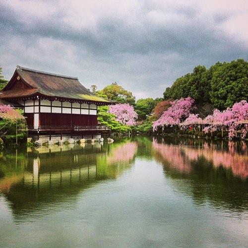 [2013花見] 那些年instagram上的櫻花 (京都 奈良 和歌山)