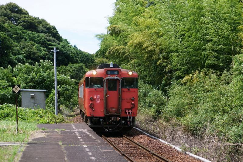 DSC04655